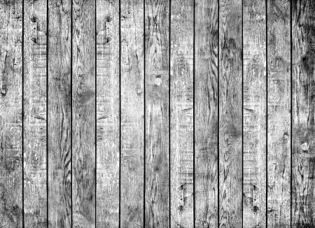 wood texture. background old panels black and white photo