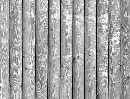 white, grey wood texture. background old panels photo