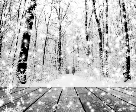 vintage: Kerst sneeuw op het hout geweven achtergronden. bos winter achtergronden