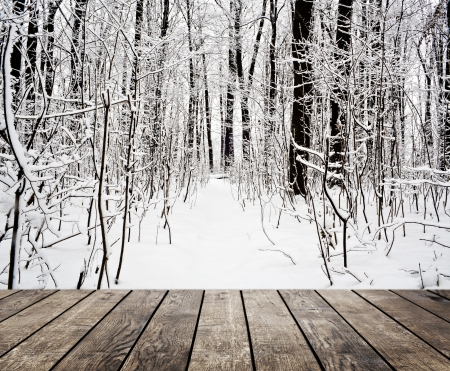 Christmas snow on the wood textured backgrounds. forest winter backgrounds photo