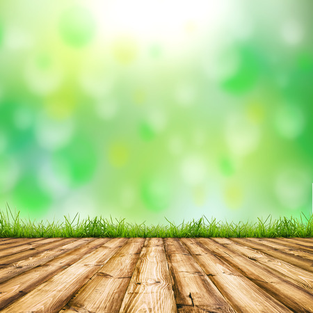 Background room interior. Fresh spring green field grass with blue bokeh and sunlight and wood floor.  photo