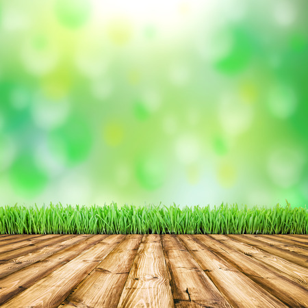 knothole: Background room interior. Fresh spring green field grass with blue bokeh and sunlight and wood floor.  Stock Photo