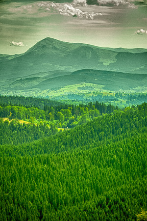 Blue Ridge Mountains: beautiful forest in the mountains. nature backgrounds