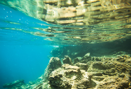 profundity: underwater world on wave background