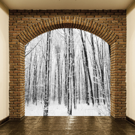 home interiors with views of the background of the winter forest photo