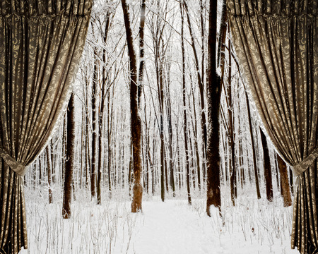 winter theater: Open curtains on the background winter forest and stars Stock Photo