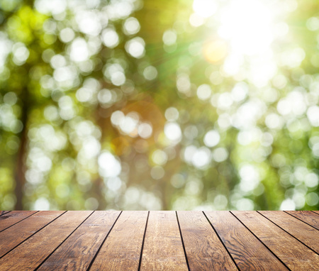 board: Beautiful sunlight in the spring forest with wood planks floor interior background
