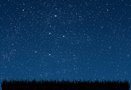 stars night: background night sky with stars. grass. Elements of this image furnished by NASA