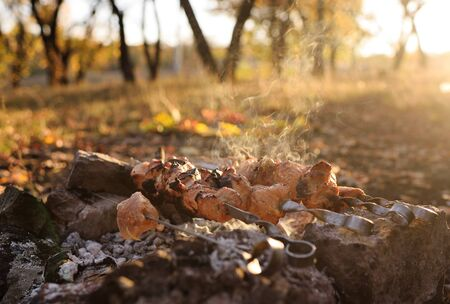fresh hot meat barbecue skewer on the background of autumn leaves and forest close-up. Autumn concept Фото со стока