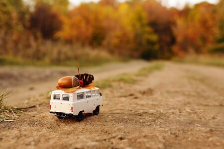 miniature toy car minivan carries on the roof yellow leaves, acorn, cone and red berries on the background of autumn nature and trees. Imagens