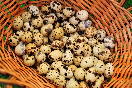 lots of quail eggs in a wicker basket close up