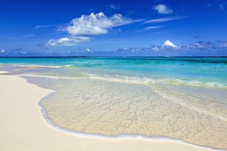 wild beach on a desert island with white sand and turquoise sea