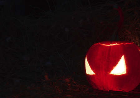 cucurbit: Scary lantern halloween pumpkin with candle light inside