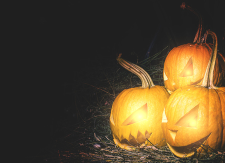 alone in the dark: Scary lantern halloween pumpkin with candle light inside.Three crazy Lantern pumpkin. Stock Photo