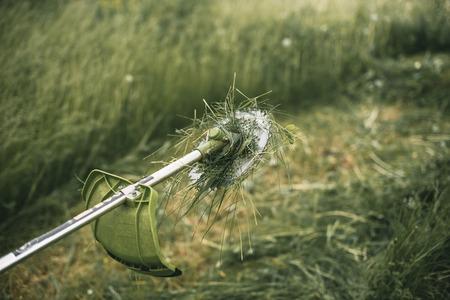 cutter: Gasoline trimmer head on green grass. Round trimmer blade.