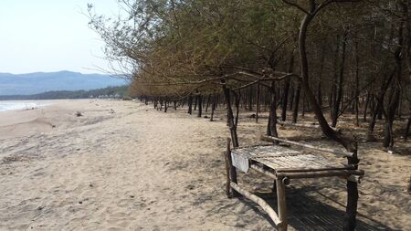 white sand beach with pine trees and selfmade bench from bamboo wood together with tree trunk and mountain in backround at Pacitan beach east java indonesia Standard-Bild