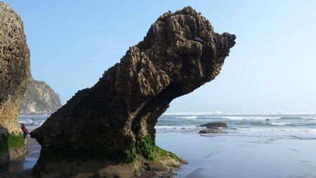 single rock formation on sand beach  looks like a sitting dog or bird looking to the sea at Parangtritis beach yogyakarta java indonesia Stock Photo