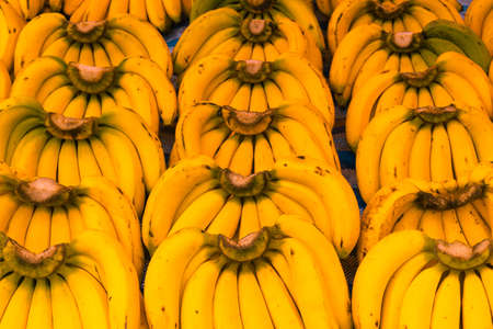 High angle view in full frame from banana bunches in symmetric order offered on a street market. Standard-Bild