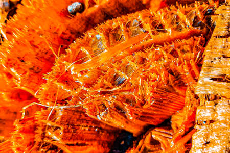 Full frame closeup from the fibers from a cut banana stump trunk, got digital edit in golden orange for textured background. Standard-Bild