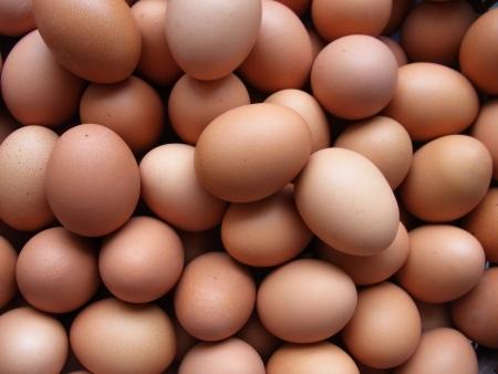 Hens  s eggs Stock Photo