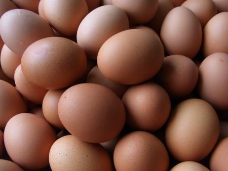 Hens  s eggs Stock Photo - 16488847