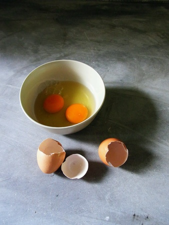Eggs in the bowel