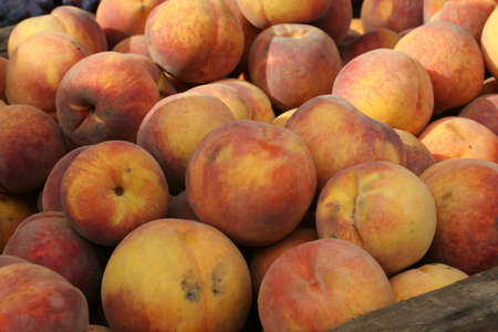 Peaches for sale at an outdoor market
