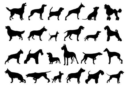 Vector set black silhouettes of dogs isolated on a white background