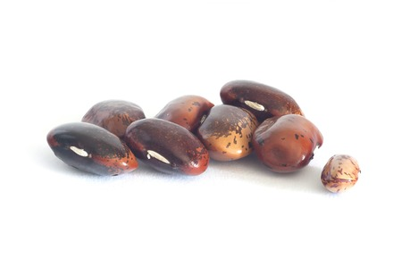 nutty: pinto beans big Stock Photo