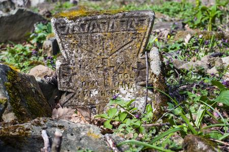 abandoned: abandoned tomb