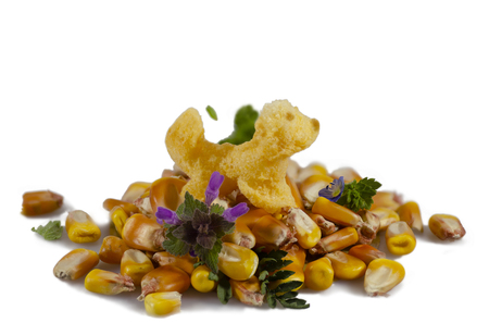 Corn snack on corn kernels 版權商用圖片