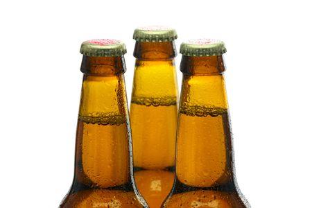 Bottles of Beer Stock Photo - 5230252