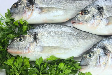 Pacific fresh fish background Stock Photo