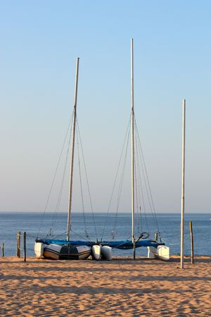 catamarans lined up on a beach