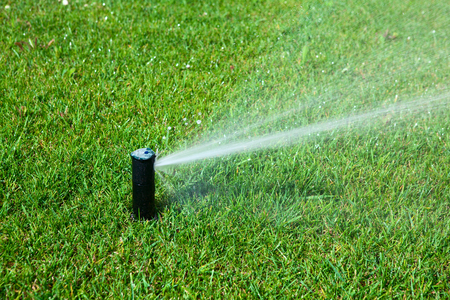 sprinkler spraying water on a green lawn