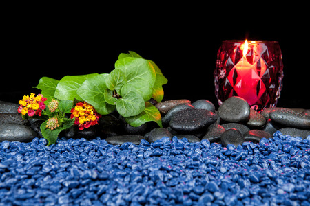 Beautiful spa composition on a black background Stock Photo