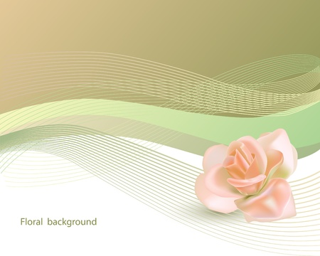 Abstract background with pink rose Vector