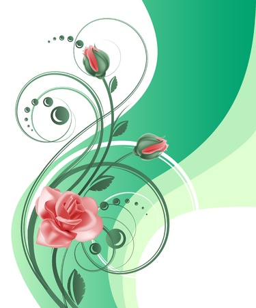 różaniec: TÅ'o kwiatu