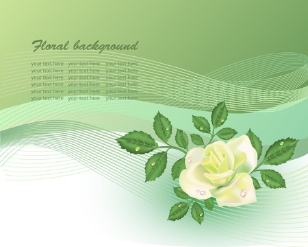 grass line: Floral background  with yellow rose in pastel tones