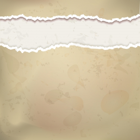 ripped paper: Old paper vector background in vintage style