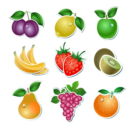 vine pear: Set of illustration fruit on the white background Illustration