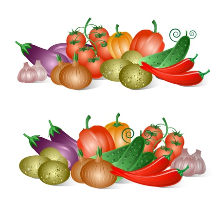 Vegetables on the white background Stock Vector - 16564814
