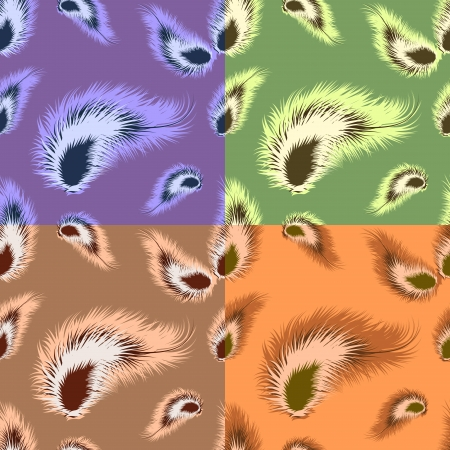 Set of seamless pattern with feathers,  vector illustration Vector