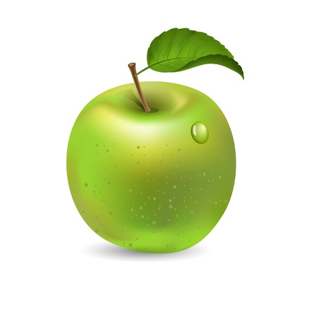 Green apple isolated on white, vector Stock Vector - 18299974