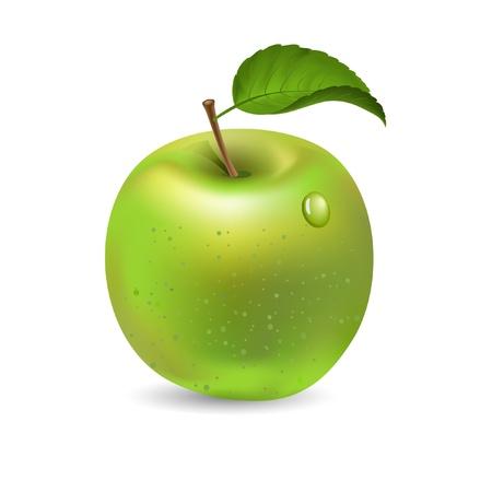 green apple isolated: Green apple isolated on white, vector Illustration