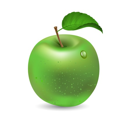 watter: Green apple isolated on white, vector Illustration