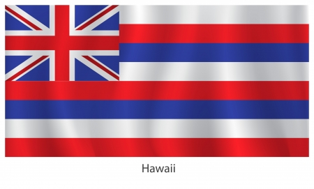Hawaii flag with titles on the white background Vector