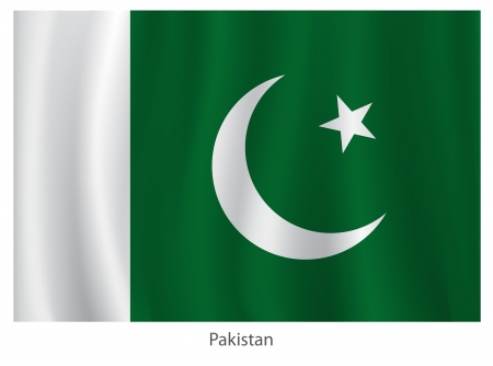 pakistan flag: Pakistan flag with title on the white background