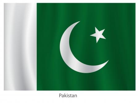 pakistan flag: Pakistan flag with title on the white background