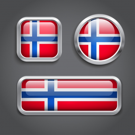 Set of Norway  flag glass buttons Vector